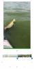 Прикрепленное изображение: Screenshot_2018-07-20-15-59-40-969_com.miui.gallery.png